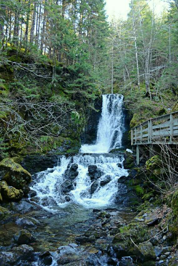 05_2014-05_park-bay-of-fundy_chutes-dickson