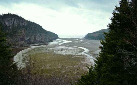 04_2014-05_park-bay-of-fundy_point-wolfe