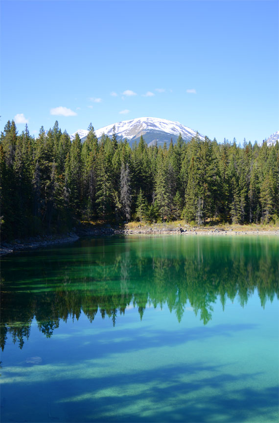 Canada_Alberta_Jasper-National-Park_Valley-of-the-five-lakes_03