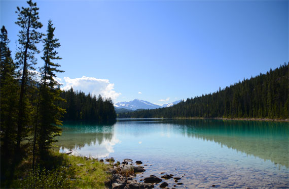 Canada_Alberta_Jasper-National-Park_Valley-of-the-five-lakes_04