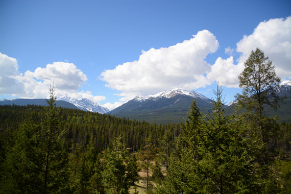 Canada_Alberta_Jasper-National-Park_Valley-of-the-five-lakes_05