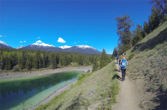 Canada_Alberta_Jasper-National-Park_Valley-of-the-five-lakes_09